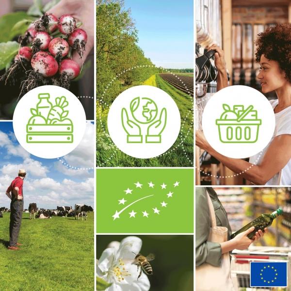 Az ökológiai termelés jövője az Európai Unióban